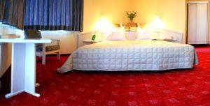 Hotel Ritz Garni
