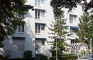 Hotel Pension Rheingold
