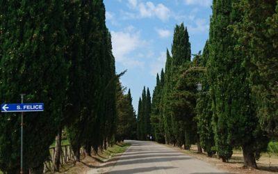 Toskana – Das Land der Sehnsucht