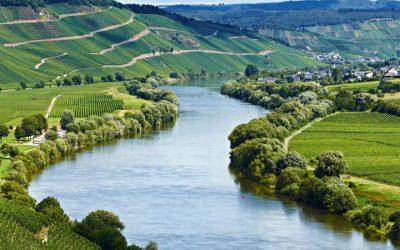Die Mosel – von Trier bis Koblenz
